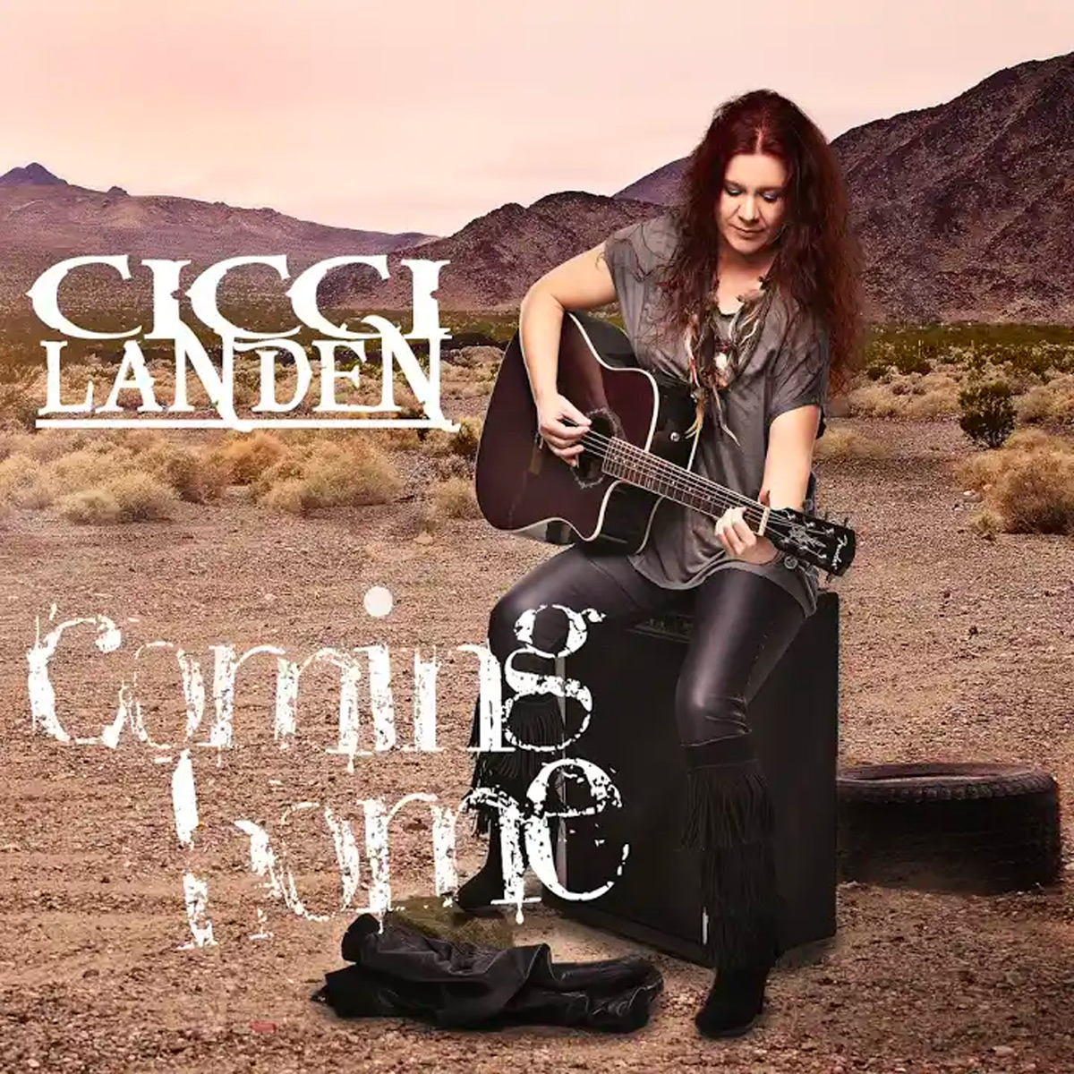 Cicci Landén album-coming-home